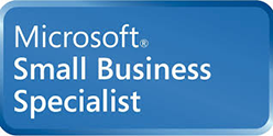ms_small Business logo